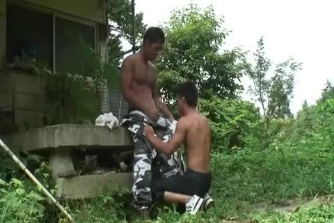 attractive oriental men engulfing & hammering