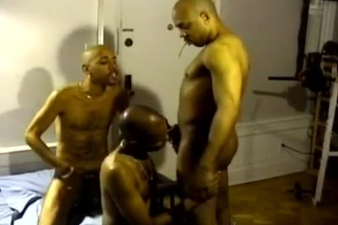 black And In The Ghetto homosexuals suck Hard dicks
