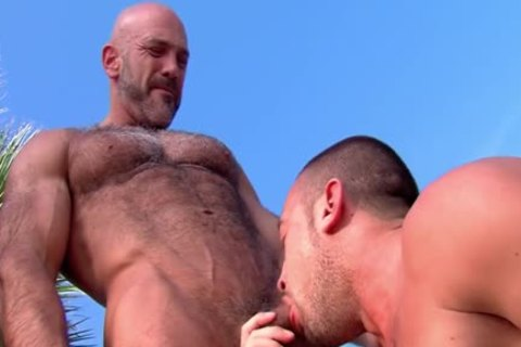 Muscly Bear engulf large penis