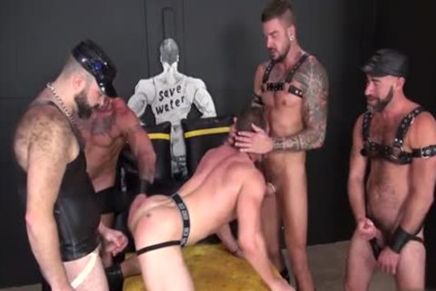 Muscle cock urinate And sperm flow