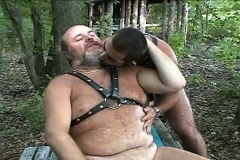 large Bear pounding In The Woods