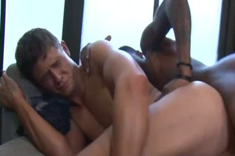 plowing The White lad BB