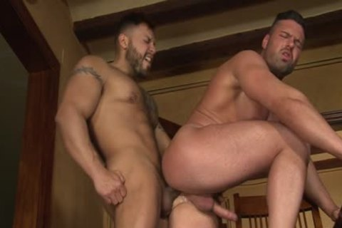 Latin Bear oral-service With cumshot
