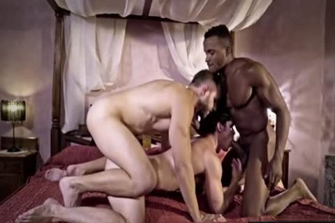 large pecker homosexual 3some And sex cream flow