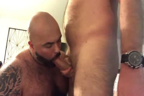 meaty Bear oral enjoyment-sex