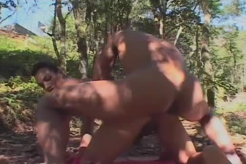 homosexual Outdoor dream engulfing And nailing