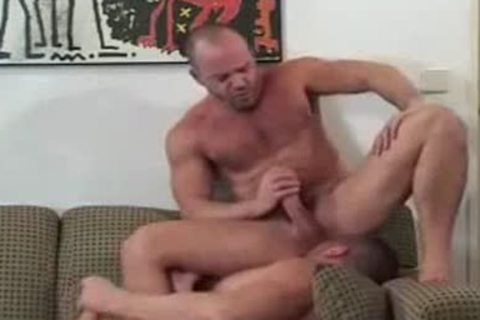 Daddy Bears nailing