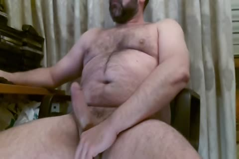 Spanish Bear Cumming