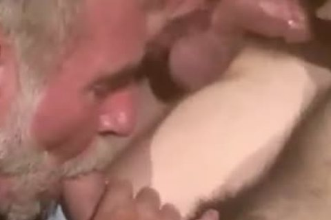 Real Bears Male engulfing & banging orgy