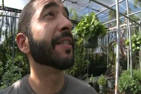 Bearded Hunk Enjoys 10-Pounder In A Greenhouse HD