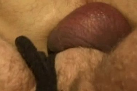 penis Wadd - biggest Poles Hungry Holes