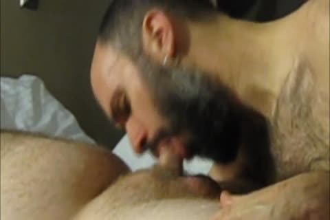 sucking Off Super bawdy Straight 21yo Bear Cub