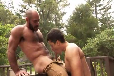 hairy Muscle Bald Bear bonks Jay Roberts