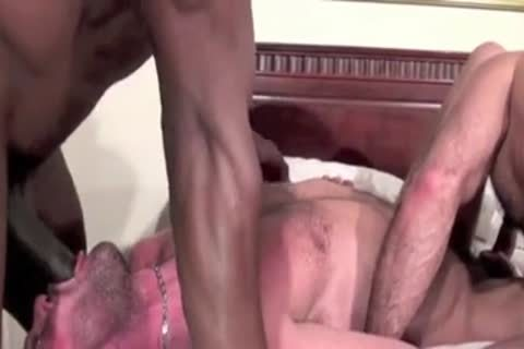 Two Muscle Bears Share BBC bare