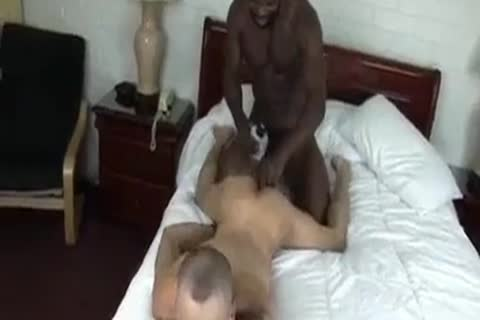 Black shemale phat ass