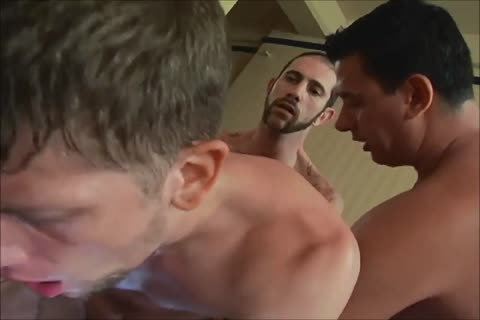 Bull-hung males drilling naughty Holes. Part XIV