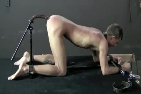 Gay bdsm sex videos