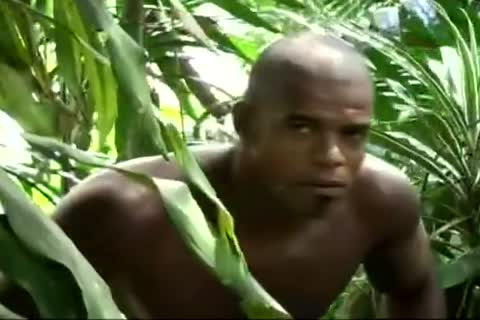 young lustful Latino guys Enjoying The Jungle