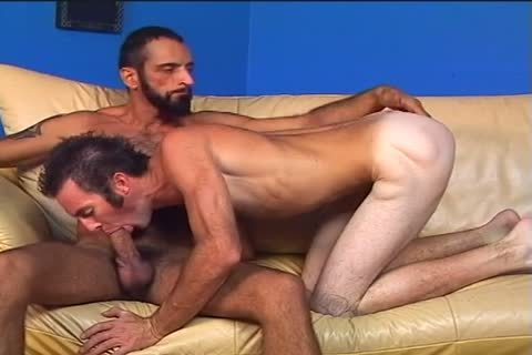 Two bushy men Randy And Tom Colt bang Each Other
