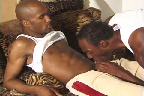 Ty And Shorty Have A yummy old homosexual Time Togehter