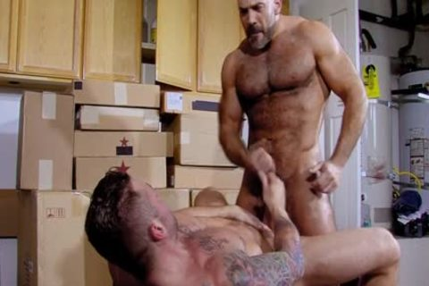 Muscled Bear pounded homosexual