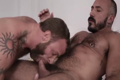 hairy men tasty hammer SESSION