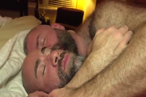 The Bear Likes The big shlong Of The Bear Daddy