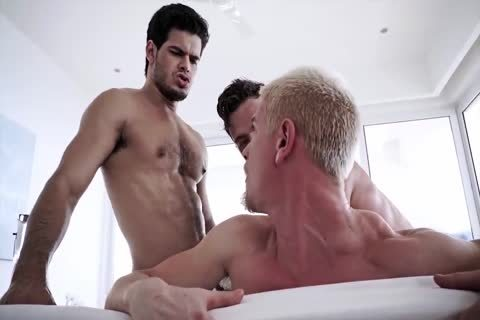 gay sexe viedeo