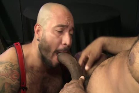 Begging For Daddys large darksome Bent cock
