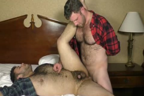 Two raw hairy pleasure Bears