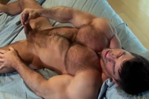 Zeb Atlas shaggy Muscle animal